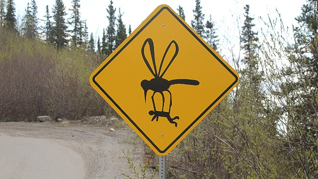пътен знак гигандски комар